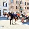イタリア・ローマのボッタクリ文化 観光馬車、悪質ミサンガ売り、ジプシーのスリ窃盗への対策