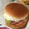 ハウステンボスに佐世保バーガーを食べに行ってみた。ハウステンボスを丸一日堪能。(長崎旅行記4)