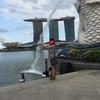 子連れ シンガポール旅行 ⑤ ダックツアー オーチャード マーライオン