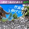 竹富島リゾートホテル建設をめぐるエグさ ~ 本土系「キャバクラ王」が竹富島住民を訴えるスラップ訴訟 ~ 島の声を聞かない RJグループの「開発」は島の「搾取」以外の何物でもない