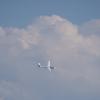 関宿のグライダーを眺める