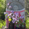 03/03:歴史をあるく「お地蔵さまとトボトボと