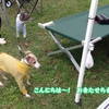 IGLE -お友達とランラン編-