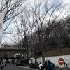 多摩動物公園と高尾山トリックアート美術館へ行った話