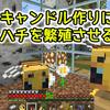 【マイクラ】ハチを飼ってキャンドルを作る