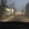 今朝の霧は凄かった!