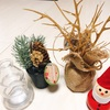 【クリスマス】を楽しむ方法!クリスマスソングとセリアのクリスマスグッズ。