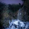 滝凍る冬の星空