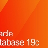 Oracle Database Preinstall 19c の実行でサーバーに設定される内容の確認