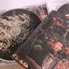 生来のジャニオタ、未知との遭遇 ~HKT48の1stアルバム 092を買った~