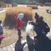 第1回目のおやこ組ぱちぱちは、辰巳の森緑道公園で☺