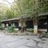 南伊豆下賀茂温泉「花のおもてなし南楽」 50㎡のお部屋と10か所の無料貸切風呂で塩辛い温泉を楽しむ1人旅