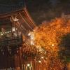 東大寺二月堂修二会(お水取り)