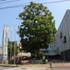 三ツ境駅から「瀬谷区役所」へのアクセス(行き方)
