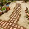 西洋芝の種蒔き挑戦