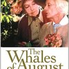 『八月の鯨』 100年後の学生に薦める映画 No.0929