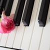 7月6日は「ピアノの日」~絶対音感とは?~