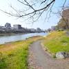 那珂川の河川敷レポート1