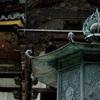 奈良一人旅