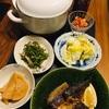 煮込みカレーうどん、鯖塩焼きで晩酌。