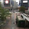 4月23日…はれ〜曇り〜小雨〜晴れ