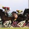 【note】京都牝馬ステークス2020を過去傾向・注目馬・展開から予想