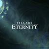 Pillars of Eternity【感想・レビュー】