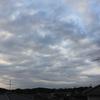 5月25日(土)晴れのち曇り