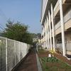 校舎南側の花壇・畑・フェンス