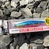DAIWA / FLAT JUNKIE SURF BREAKER 108S
