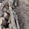 薪割り スペース確保 Splitting wood
