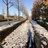 【凍結注意】東京都稲城市の路面状況 尾根幹も危ないです