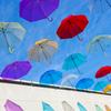 傘の上で雨粒がコロコロ踊る♪雨の日のお出かけがハッピーになる新作傘「フロータス」をご紹介
