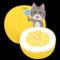 ギネス認定巨大晩白柚5,386g凄いっ!