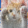 猫のジグソーパズル