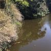『三ツ池』静岡県掛川野池群バス釣り完全攻略マップ