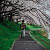 お気に入りの桜をEマウントレンズで撮る~桜のトンネル編~