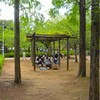 霞ヶ浦総合公園の藤~つくば市とその周辺の風景写真案内(401)