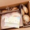 「ありがとう」がたくさん詰まったパンが届きました