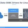 CData ODBC Driver for Linuxの使い方
