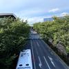 東京五輪ロードレースのスタート地点 武蔵野の森公園