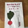 家庭菜園 日記ep2  ハツカダイコン 種まき