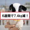 【ダイエット】6週間目は体重微減...。合計は-7.4kg。