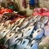【大満足】フィリピンの伝統的な市場型レストラン シーサイドマーケットに行ってきた