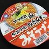 サッポロ一番みそラーメンどんぶり 加賀味噌使用ねぎみそ風 具材と味噌と・・・・