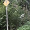 【不気味な旅行】都市伝説の「!標識」を探してみた。