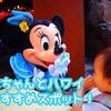 【1歳児】赤ちゃんとハワイ・ホノルル!おすすめスポット!【子連れ海外旅行】