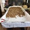 奄美一とも名高い水間黒糖さんで、出来立ての手造り黒糖を求めて少しお邪魔