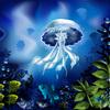 【無料/フリーBGM素材】海底、不思議、神秘的『海月』おしゃれな雰囲気