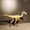 ブダペストで恐竜を見に行こう!【ハンガリー自然史博物館】